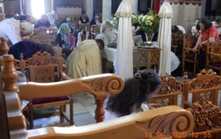 Παράκληση στον Άγιο Λουκά για την πανδημία